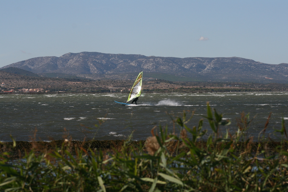 Windsurfen_Etang_de_Leucate_IMG_2421.JPG