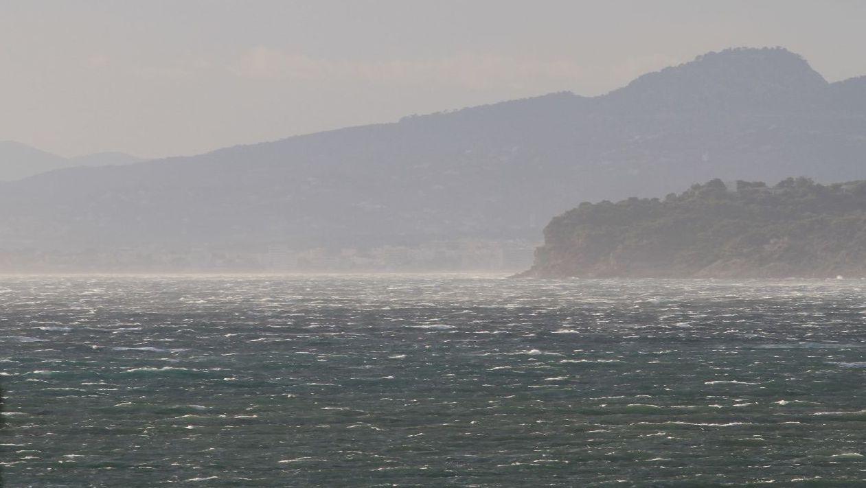 Windsurfen_L_Almanarre_IMG_2250.JPG
