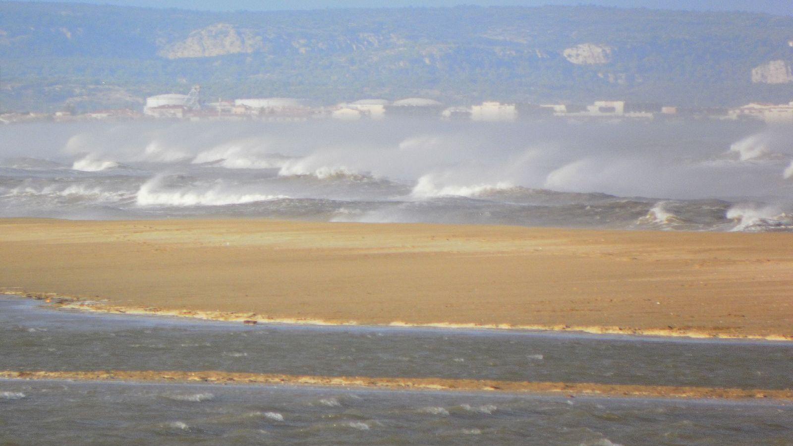 Windsurfen_La_Franqui_franqui_01.JPG