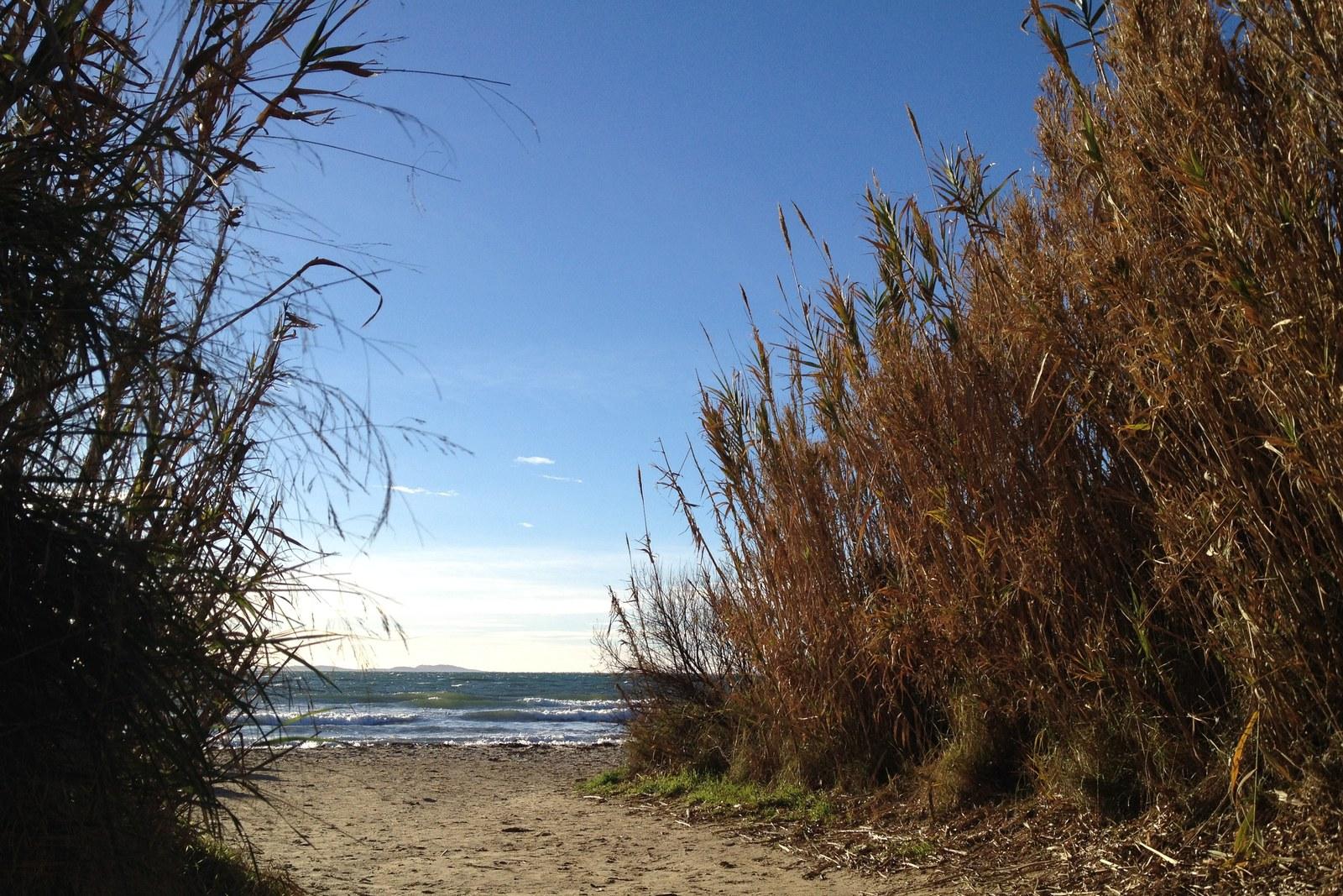 Windsurfen_Bregancon_IMG_1714.JPG